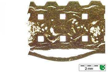 Dünnschliffaufnahme eines schadhaften Elektroniksteckers
